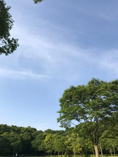 松戸市出張中です。